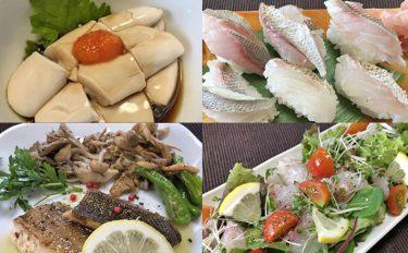 船イサキ釣行:釣果いまいちも絶品手料理で家族満足【愛知県・大山沖】