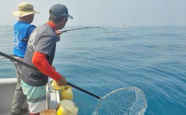 船ジギング釣行:カツオにブリにサワラと魚種豊富!【愛知県・伊勢湾】