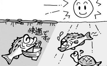 初心者向け!バスフィッシング用語講座vol.2【イラスト付き解説】