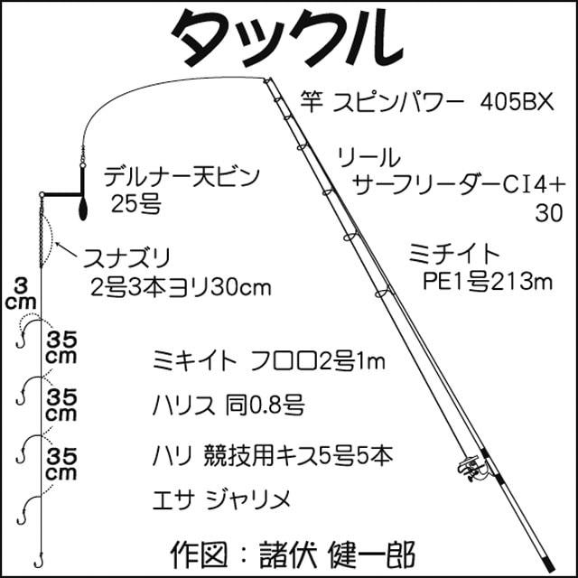 シロギス投げ釣り:23cm筆頭に33尾で引き堪能【静岡県・清水港】