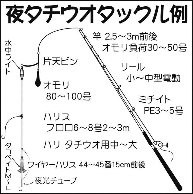 駿河湾《夜》タチウオ攻略:釣況〜タックル〜釣り方まで【キホン解説】