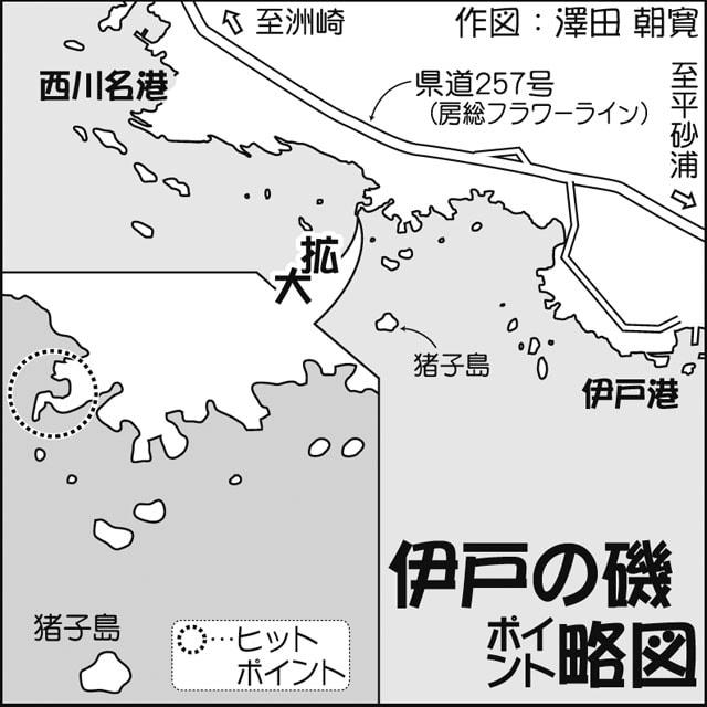 ウキフカセ釣行:夜から入磯して朝マヅメを狙う!【千葉県・伊戸の磯】