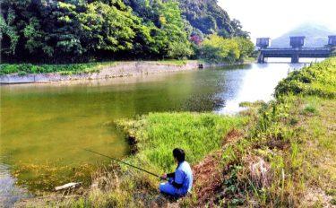 淡水小物釣りのススメ:近場の水辺でも釣りは楽しめるぞ【解説&実釣】