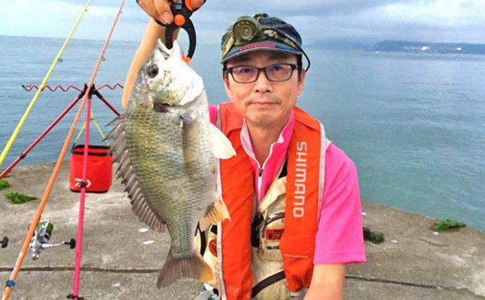 夜の投げ釣り:45cm良型キビレ引き堪能!【兵庫県・塩屋海岸】