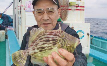 船カワハギ釣行:雨模様の中27cm筆頭に9尾!【千葉県・加平丸】