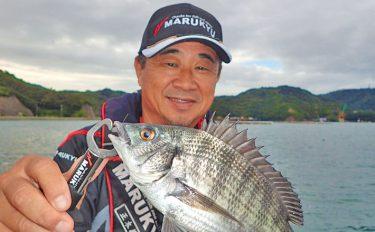 チヌカカリ釣り初心者入門!数釣り可能な今がチャンス!【キホン解説】
