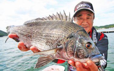 イカダかかり釣り:秋チヌ40cm筆頭に17尾!【兵庫県・淡路島】