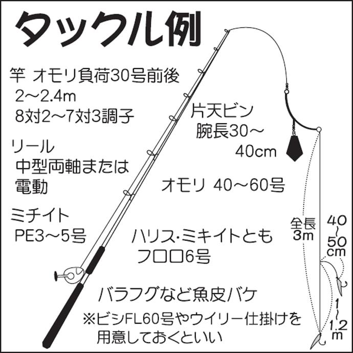 カッタクリ攻略:船からバケ(擬餌針)で狙うカンパチ!【キホン解説】