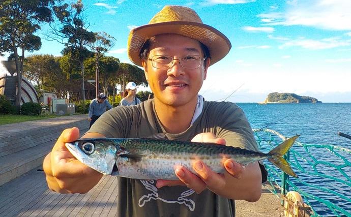 陸タチウオ釣行:電気ウキで挑戦!【神奈川県・横須賀海辺釣り公園】