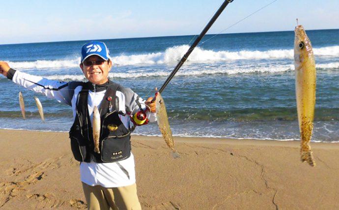 サーフ投げ釣り:秋ギス130尾!2人で半日釣果【鳥取砂丘海岸】