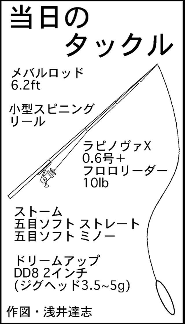SUP(サップ)釣行:ライトタックルでハタゲーム!【福井県・敦賀】