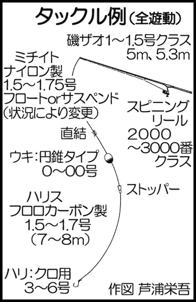 秋磯クロ釣り初心者入門!釣るのに大事な4つのポイント【解説&実釣】