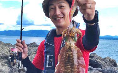 ヒラスズキ&秋エギング釣行:シャローで猛烈アタック【長崎県・平戸】