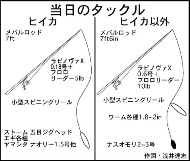 伊勢湾ヒイカ開幕!?陸っぱりエギング調査へ!【三重県・霞ヶ浦ふ頭】