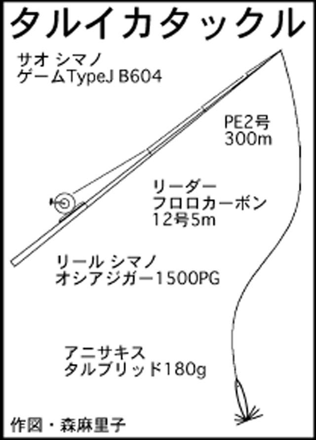 イカメタル15kg巨大タルイカ!ステイ意識し8杯【福井県・美浜町】