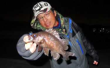 陸釣りのキホン?ちょい投げブッコミ釣りでメバル【愛知県・師崎漁港】