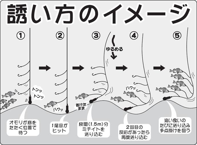 コレが高級魚の提灯行列!深場メヌケ(アコウダイ)釣り初心者入門
