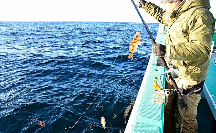 船オキメバル釣り初心者入門!胴突き仕掛けのエサ釣り【茨城エリア】