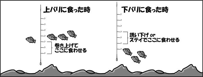 平成最後のシーズン到来!船からサビキで狙うメバル釣り初心者入門!