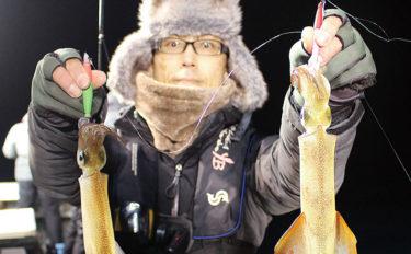 ヤリイカ釣りお祭りモード突入 船中トップ75杯【福井県・一美丸】