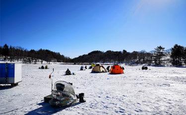 氷上ワカサギ釣り331尾 手バネ竿で挑戦!【群馬県・バラギ湖】