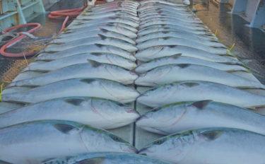 玄界灘の沖釣り最新釣果情報 船中ブリ60尾の大釣りも!