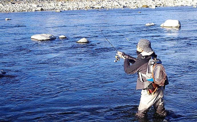 群馬名物!遊漁用ニジマス「ハコスチ」と遊ぶ本流ルアー釣行【利根川】