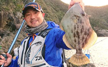 磯での投げカワハギ釣り徹底解説 横の引きが独特!【釣り場紹介付き】