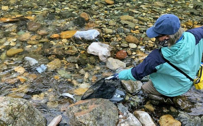 女性にオススメの河川で渓流釣り 良型アマゴとご対面【岐阜県】