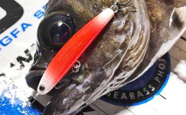盛期到来!東京湾ボートメバリングの魅力 実は初心者にこそオススメ