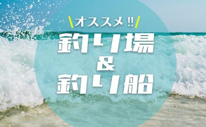 【TSURINEWS厳選】関西オススメ釣り場&釣り船
