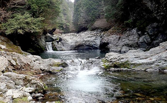 渓流ルアーで美アマゴ12尾 エサにスレてもルアーにアタック【奈良県】