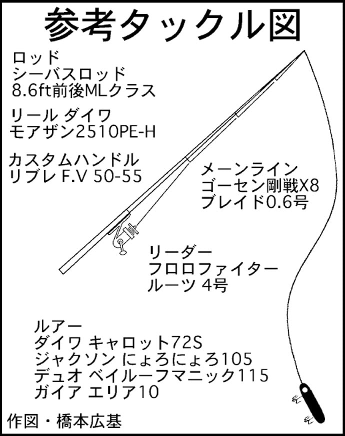 バチ抜けパターン完全解説 3分で理解できる良型シーバス数釣り攻略法