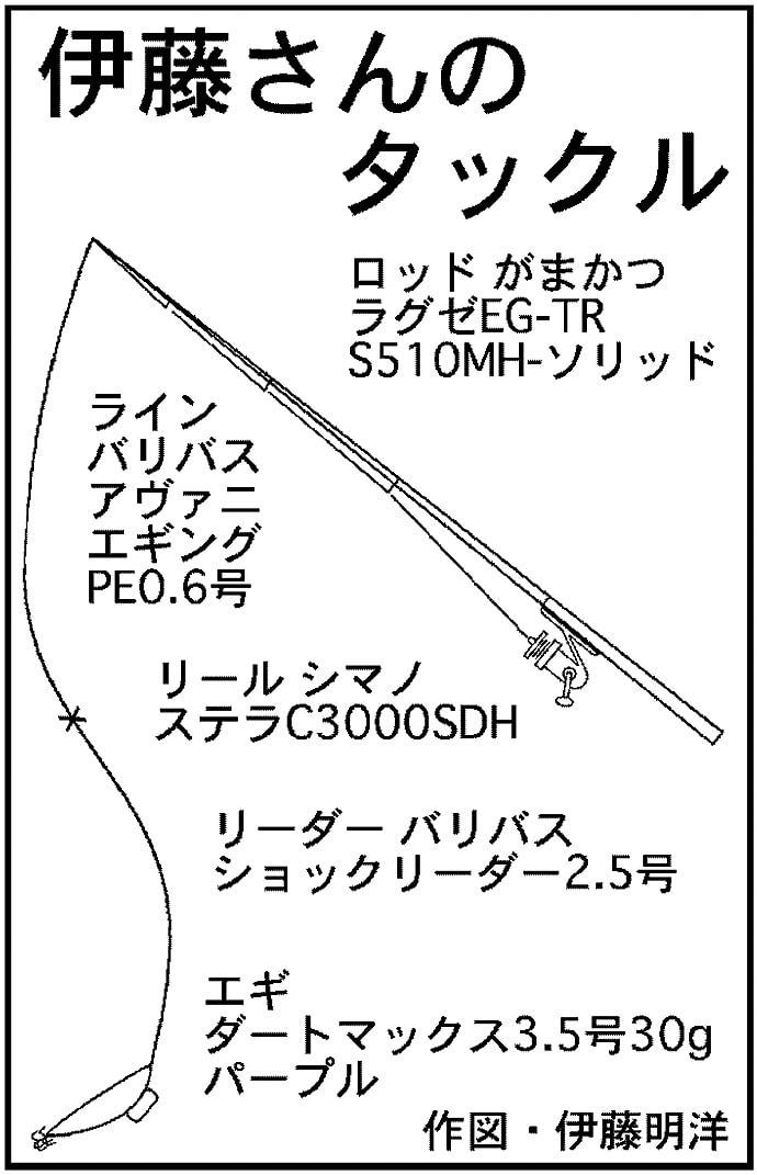 ティップランエギング2.4kg頭にアオリイカ34杯【三重・志摩沖】