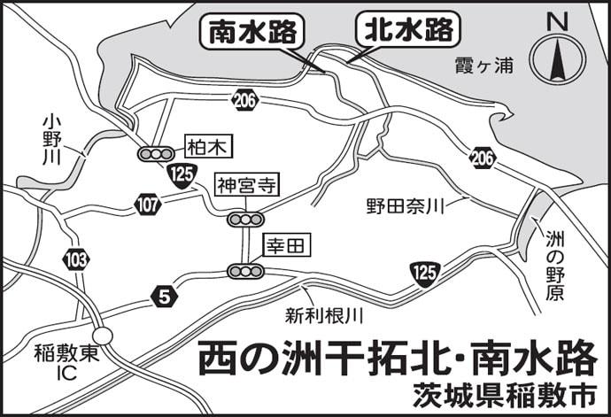 今週のヘラブナ推薦釣り場【茨城県・西の洲干拓水路】