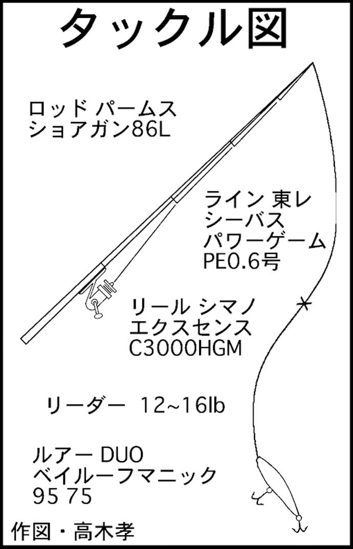1時間でバチ抜けシーバス5尾 ハイシーズン突入!【愛知県・武豊港】