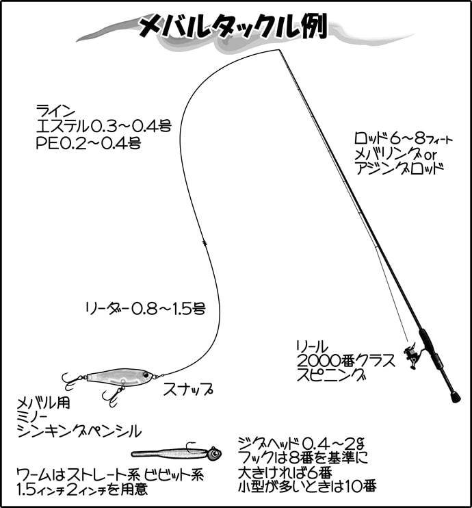 プラグ&ジグヘッドメバリング初心者入門 ポイント別攻略法も【関西】