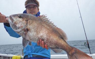 【響灘】沖でのエサ釣り最新釣果 メバル・大ダイ・イサキなど魚種多彩