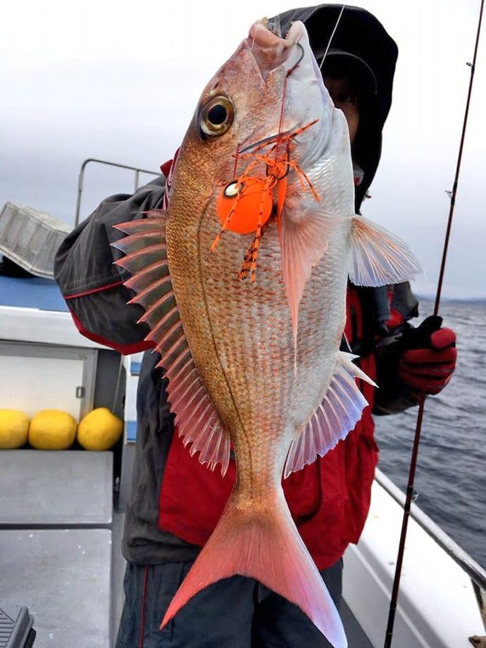 【愛知&三重】船釣り最新釣果情報 52cmマハタにメバルと根魚好調