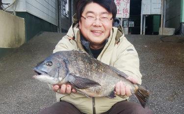 沖磯ダンゴ釣りで52cm頭チヌ14尾 年無し3尾も【和歌山・田辺】