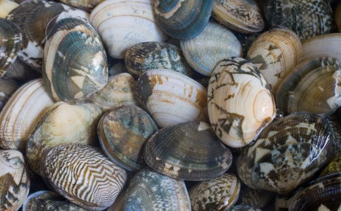 海で遊ぶ前に知っておくべき『漁業権』を解説 潮干狩りも要注意!?