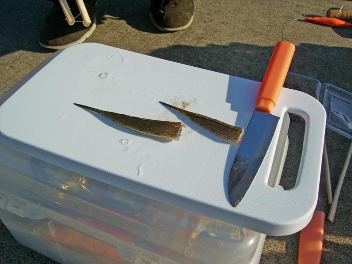 魚を釣ったら5分でご飯 『現地食い』に最低限必要な6つのアイテム