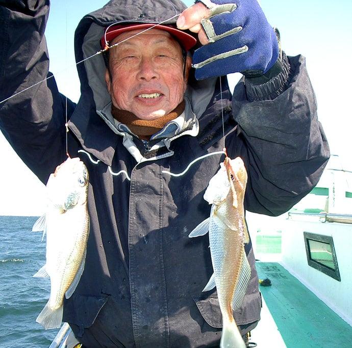 東京湾イシモチ釣り36cm頭に63尾 送り込みが吉【神奈川・鴨下丸】