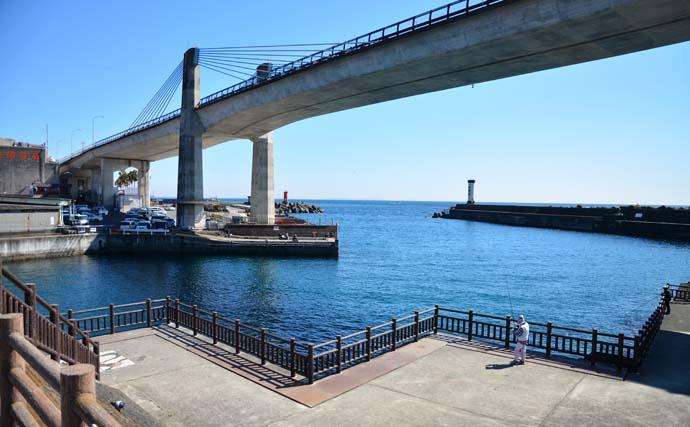 電車釣行可能!関東おすすめ陸っぱり釣り場【神奈川・早川港/大磯港】