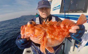 【長崎・大分・熊本】船釣り最新釣果 11kgヒラマサにメバル50尾