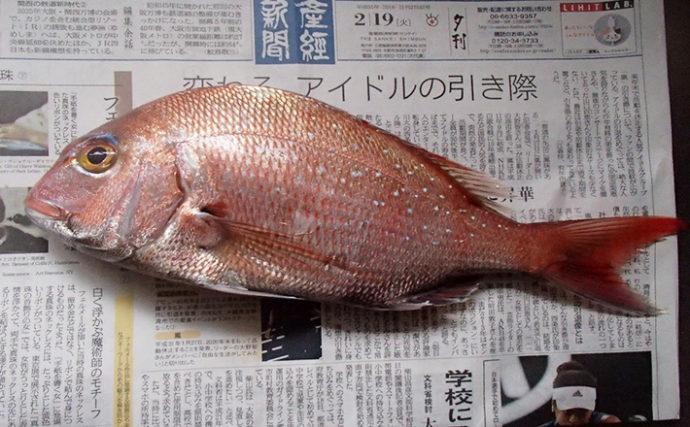 マイボートカレイ釣りがまさかのマダイ2連発【大阪・関西空港橋脚下】