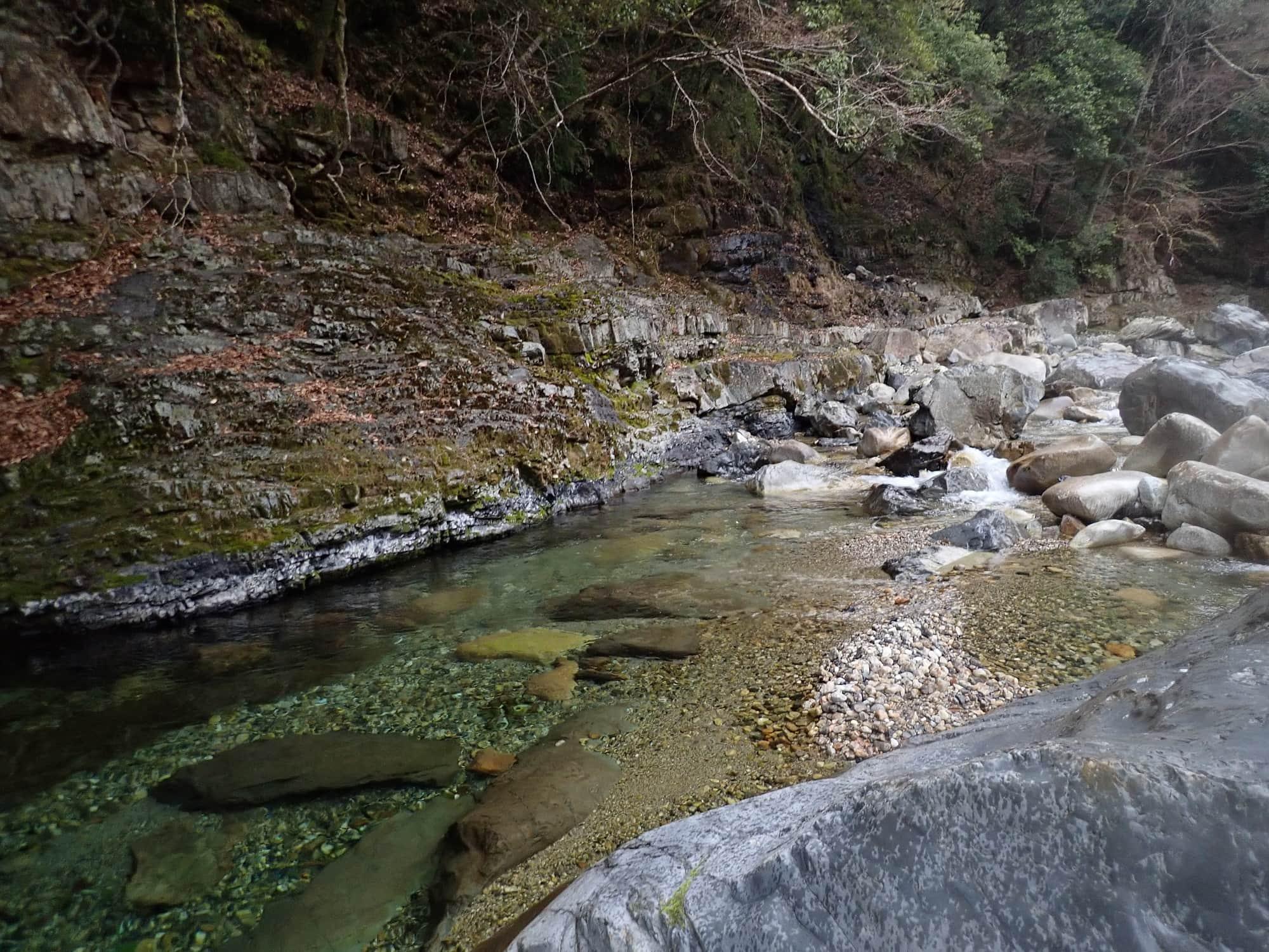 渓流ルアーでネイティブアマゴ チェイス多く満喫【奈良県・十津川村】