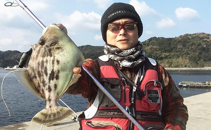 波止の投げ釣りで29cmカワハギ ノマセ釣りも【愛媛県・宇和島】