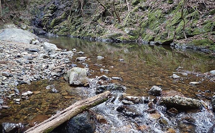 渓流ルアーで天然アマゴ3尾 移動後1投目が重要【和歌山県・丹生川】