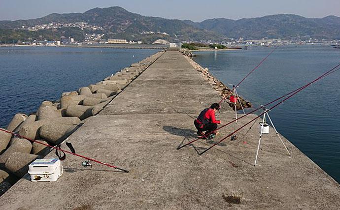 沖堤投釣りでカレイ&アブラメ 船通過が時合い?【淡路・洲崎一文字】